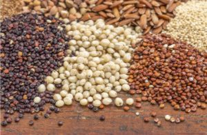 "Is it Ok to Eat Quinoa, Buckwheat and Other ""Non-Grains""?"